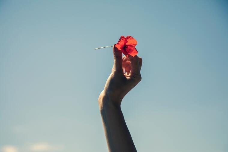 一輪の赤い花