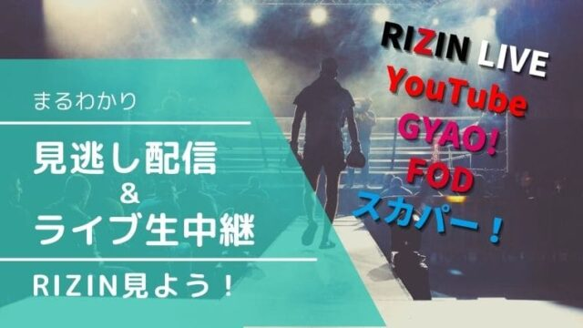 【RIZIN視聴方法まるわかり】無料見逃し配信&ライブ生中継を見る方法